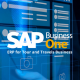 Upgrade Your Tour and Travels Business with SAP Business One ERP